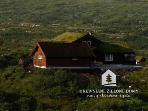 Drewniane Zielone Domy Skandynawskie  (3)