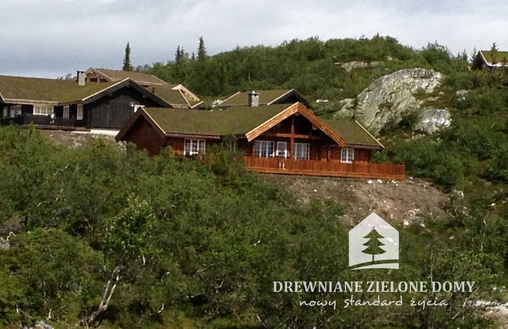 Drewniane Zielone Domy Skandynawskie  (8)