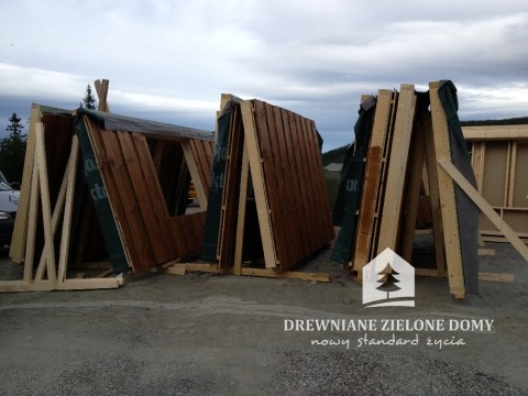Drewniane Zielone Domy Skandynawskie  (9)